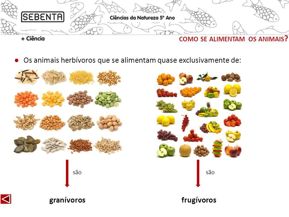 Os animais herbívoros que se alimentam quase exclusivamente de: granívorosfrugívoros são COMO SE ALIMENTAM OS ANIMAIS ?