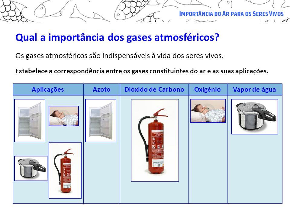 Qual a importância dos gases atmosféricos? Estabelece a correspondência entre os gases constituintes do ar e as suas aplicações. AplicaçõesAzotoDióxid