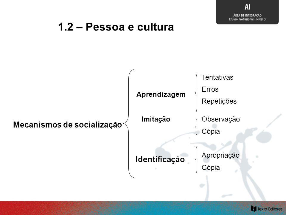 SOCIALIZAÇÃO E CULTURA Aprendizagem Mecanismos de socialização Identificação Tentativas Erros Repetições Observação Cópia Apropriação Cópia Imitação 1