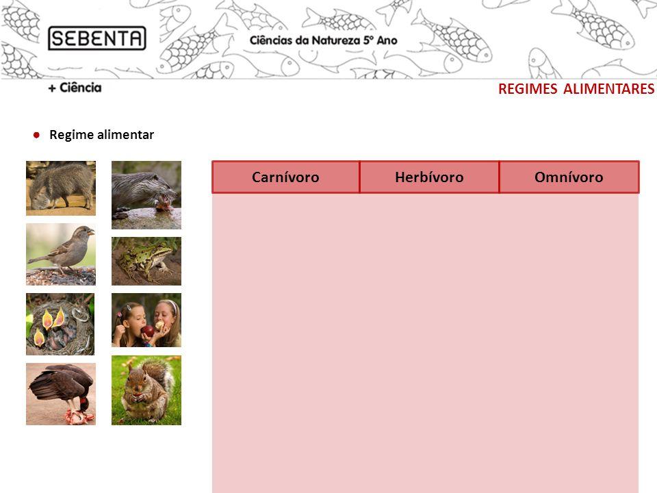 REGIMES ALIMENTARES Piscívoro Insectívoro Necrófago Sub-regime alimentar Granívoro Frugívoro