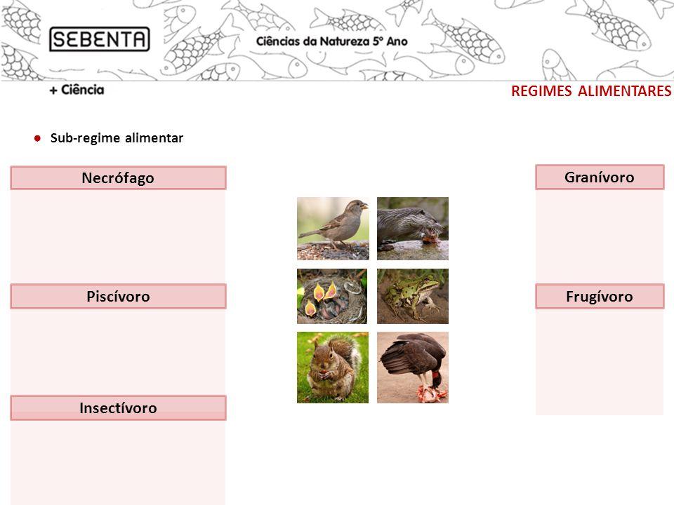 completa Adaptações dos mamíferos ao seu regime alimentar REGIMES ALIMENTARES Observa as figuras e preenche os espaços em branco de modo a obter afirmações correctas.