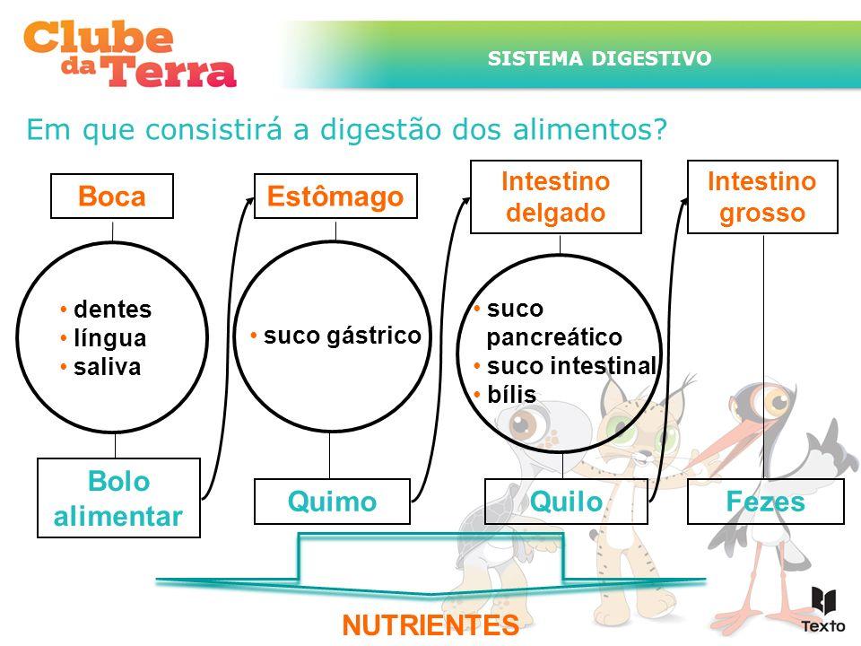 Em que consistirá a digestão dos alimentos? NUTRIENTES Estômago Intestino delgado Intestino grosso Boca dentes língua saliva Bolo alimentar Fezes suco
