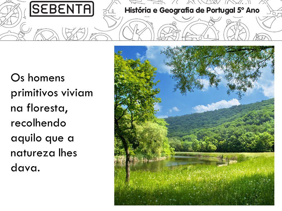 Os homens primitivos viviam na floresta, recolhendo aquilo que a natureza lhes dava.