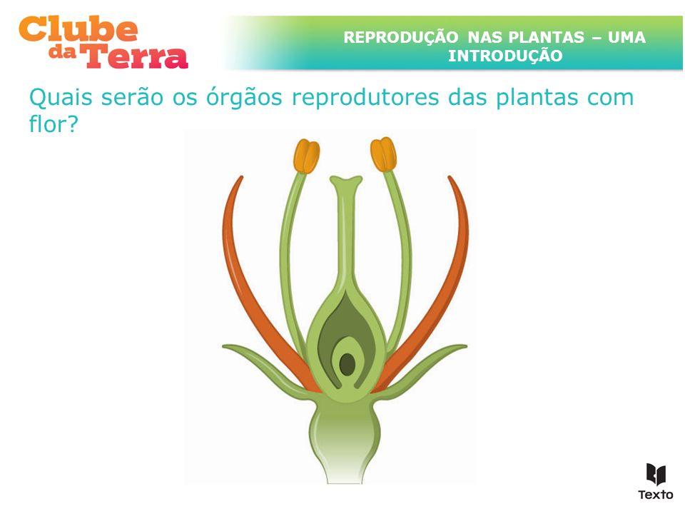 TÍTULO DO ASSUNTO A SER TRATADO NESTE POWERPOINT QUE TEM UM TÍTULO GRANDE Como será constituída uma flor.
