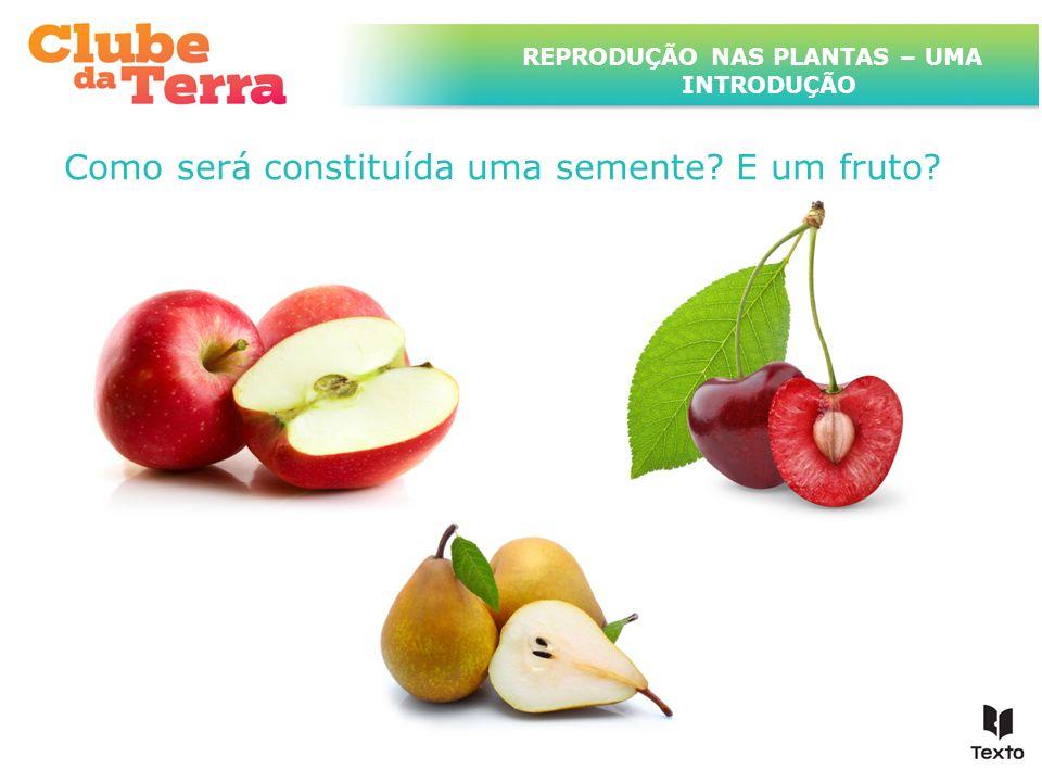 TÍTULO DO ASSUNTO A SER TRATADO NESTE POWERPOINT QUE TEM UM TÍTULO GRANDE Como será constituída uma semente? E um fruto? REPRODUÇÃO NAS PLANTAS – UMA