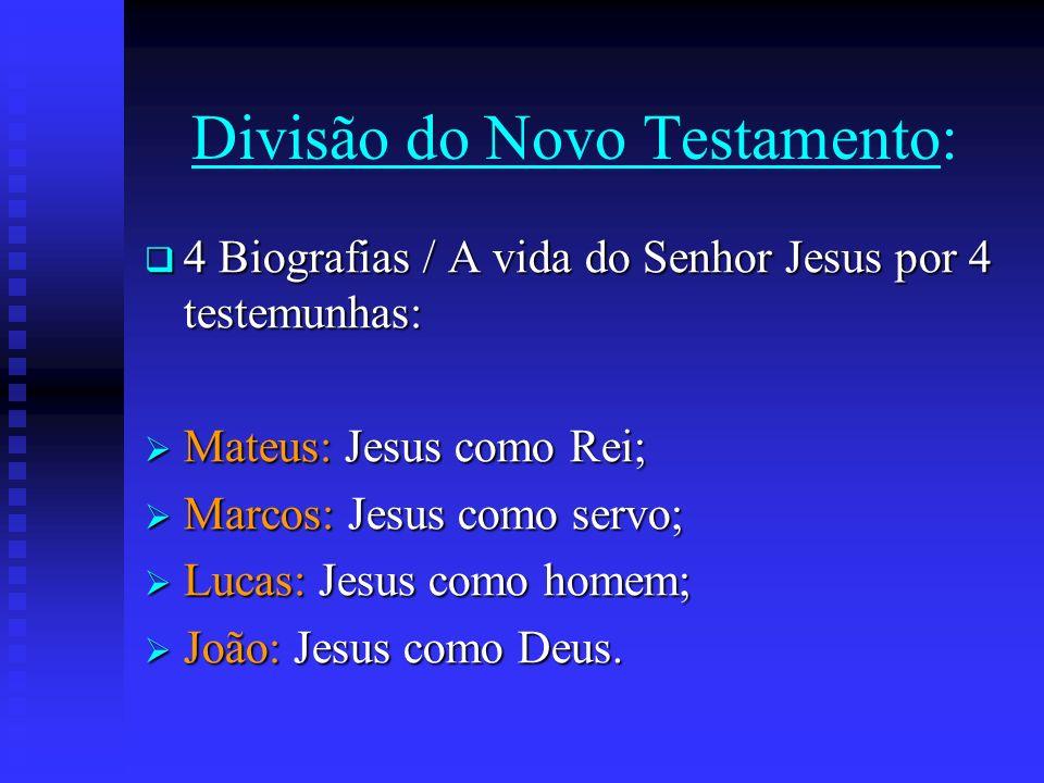 Divisão do Novo Testamento: 4 Biografias / A vida do Senhor Jesus por 4 testemunhas: 4 Biografias / A vida do Senhor Jesus por 4 testemunhas: Mateus: