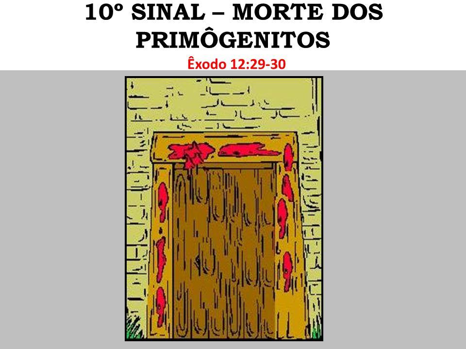 Êxodo 12:29-30