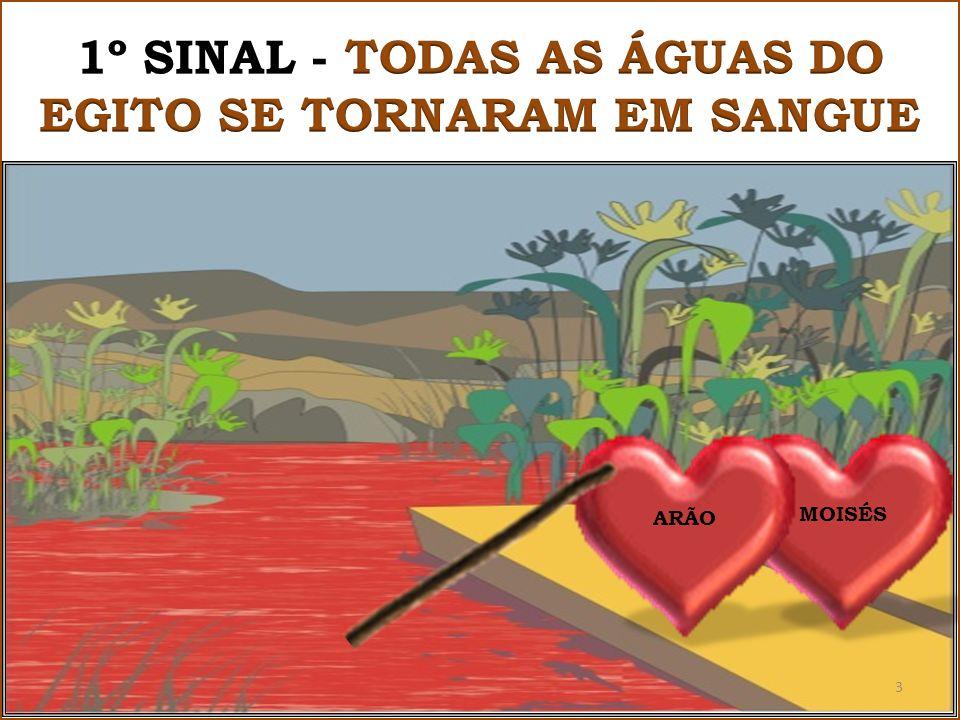 MOISÉS ARÃO 3