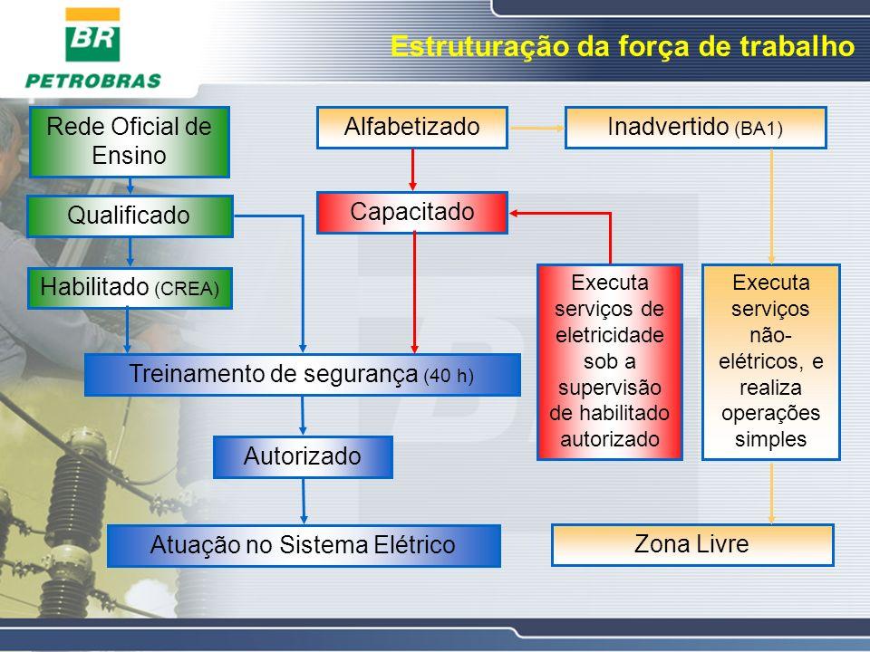 Estruturação da força de trabalho Habilitado (CREA) AlfabetizadoInadvertido (BA1) Treinamento de segurança (40 h) Autorizado Atuação no Sistema Elétri