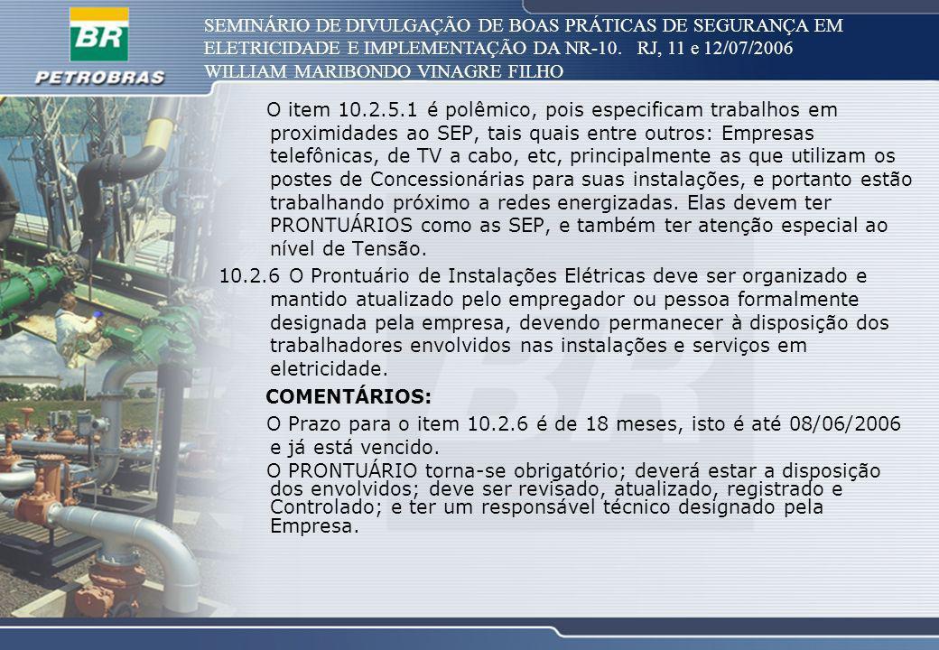 SEMINÁRIO DE DIVULGAÇÃO DE BOAS PRÁTICAS DE SEGURANÇA EM ELETRICIDADE E IMPLEMENTAÇÃO DA NR-10. RJ, 11 e 12/07/2006 WILLIAM MARIBONDO VINAGRE FILHO O