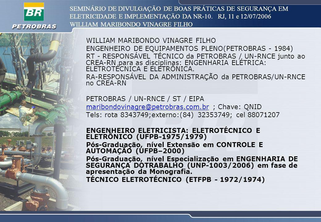 SEMINÁRIO DE DIVULGAÇÃO DE BOAS PRÁTICAS DE SEGURANÇA EM ELETRICIDADE E IMPLEMENTAÇÃO DA NR-10. RJ, 11 e 12/07/2006 WILLIAM MARIBONDO VINAGRE FILHO EN