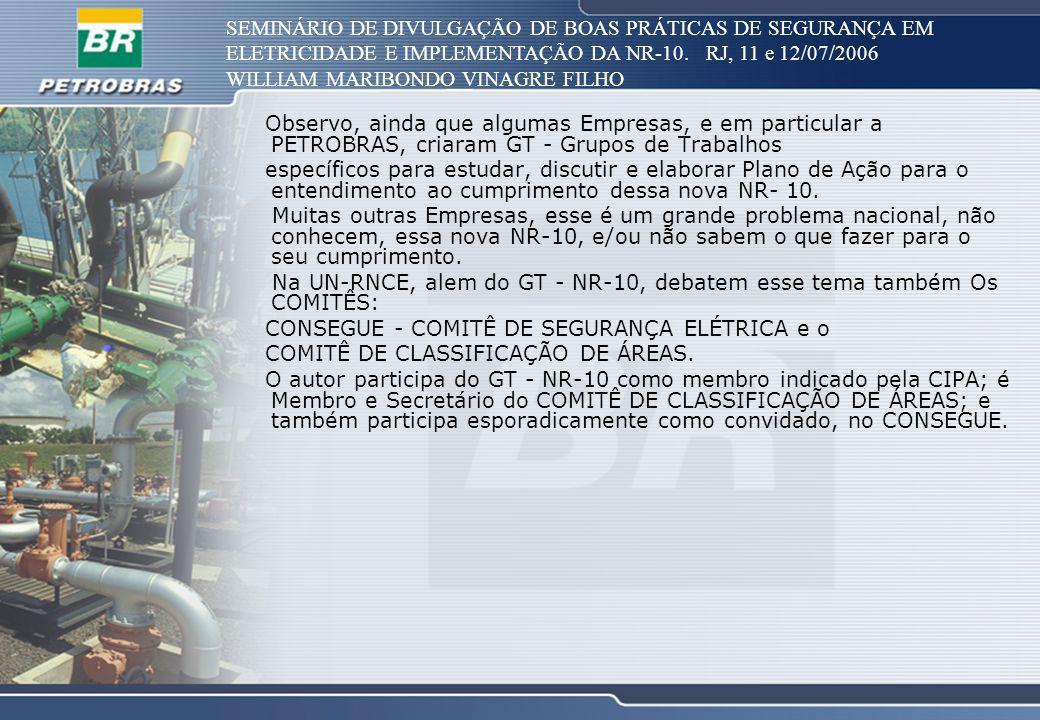 SEMINÁRIO DE DIVULGAÇÃO DE BOAS PRÁTICAS DE SEGURANÇA EM ELETRICIDADE E IMPLEMENTAÇÃO DA NR-10. RJ, 11 e 12/07/2006 WILLIAM MARIBONDO VINAGRE FILHO Ob