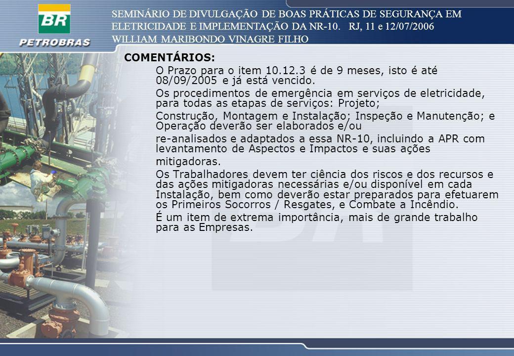 SEMINÁRIO DE DIVULGAÇÃO DE BOAS PRÁTICAS DE SEGURANÇA EM ELETRICIDADE E IMPLEMENTAÇÃO DA NR-10. RJ, 11 e 12/07/2006 WILLIAM MARIBONDO VINAGRE FILHO CO