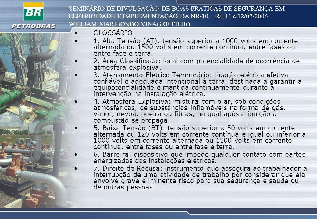 SEMINÁRIO DE DIVULGAÇÃO DE BOAS PRÁTICAS DE SEGURANÇA EM ELETRICIDADE E IMPLEMENTAÇÃO DA NR-10. RJ, 11 e 12/07/2006 WILLIAM MARIBONDO VINAGRE FILHO GL