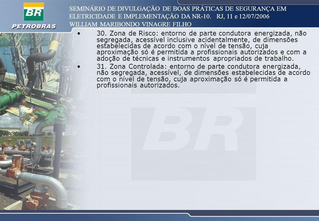 SEMINÁRIO DE DIVULGAÇÃO DE BOAS PRÁTICAS DE SEGURANÇA EM ELETRICIDADE E IMPLEMENTAÇÃO DA NR-10. RJ, 11 e 12/07/2006 WILLIAM MARIBONDO VINAGRE FILHO 30