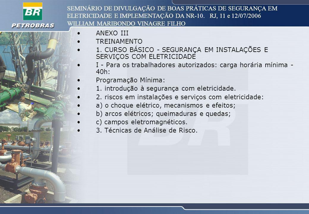 SEMINÁRIO DE DIVULGAÇÃO DE BOAS PRÁTICAS DE SEGURANÇA EM ELETRICIDADE E IMPLEMENTAÇÃO DA NR-10. RJ, 11 e 12/07/2006 WILLIAM MARIBONDO VINAGRE FILHO AN
