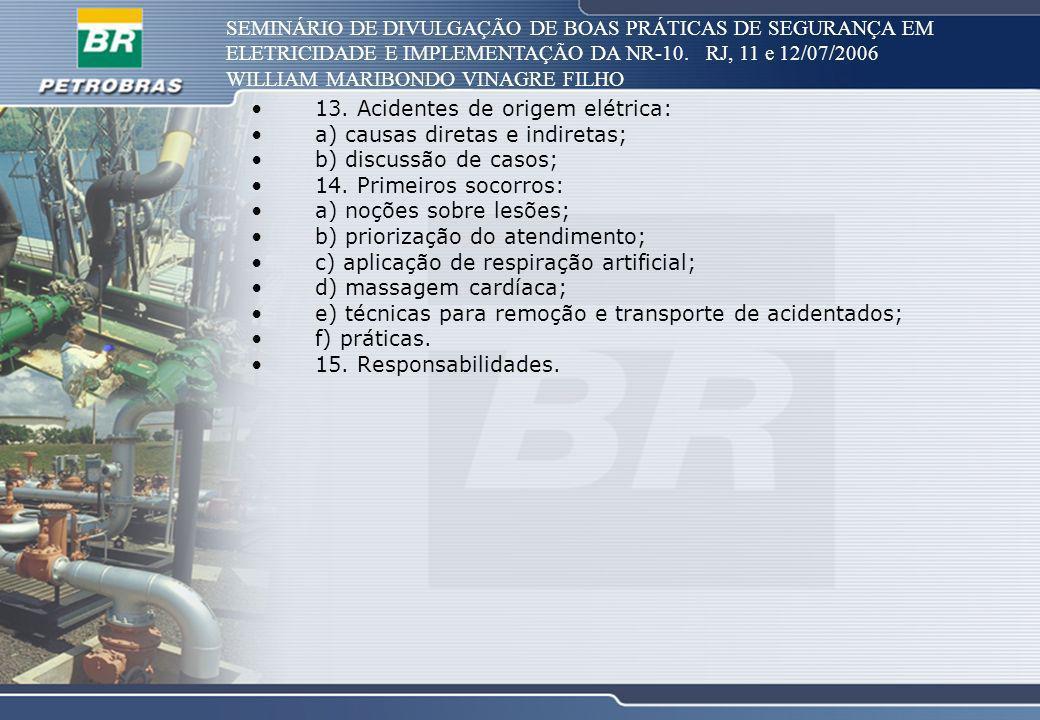 SEMINÁRIO DE DIVULGAÇÃO DE BOAS PRÁTICAS DE SEGURANÇA EM ELETRICIDADE E IMPLEMENTAÇÃO DA NR-10. RJ, 11 e 12/07/2006 WILLIAM MARIBONDO VINAGRE FILHO 13