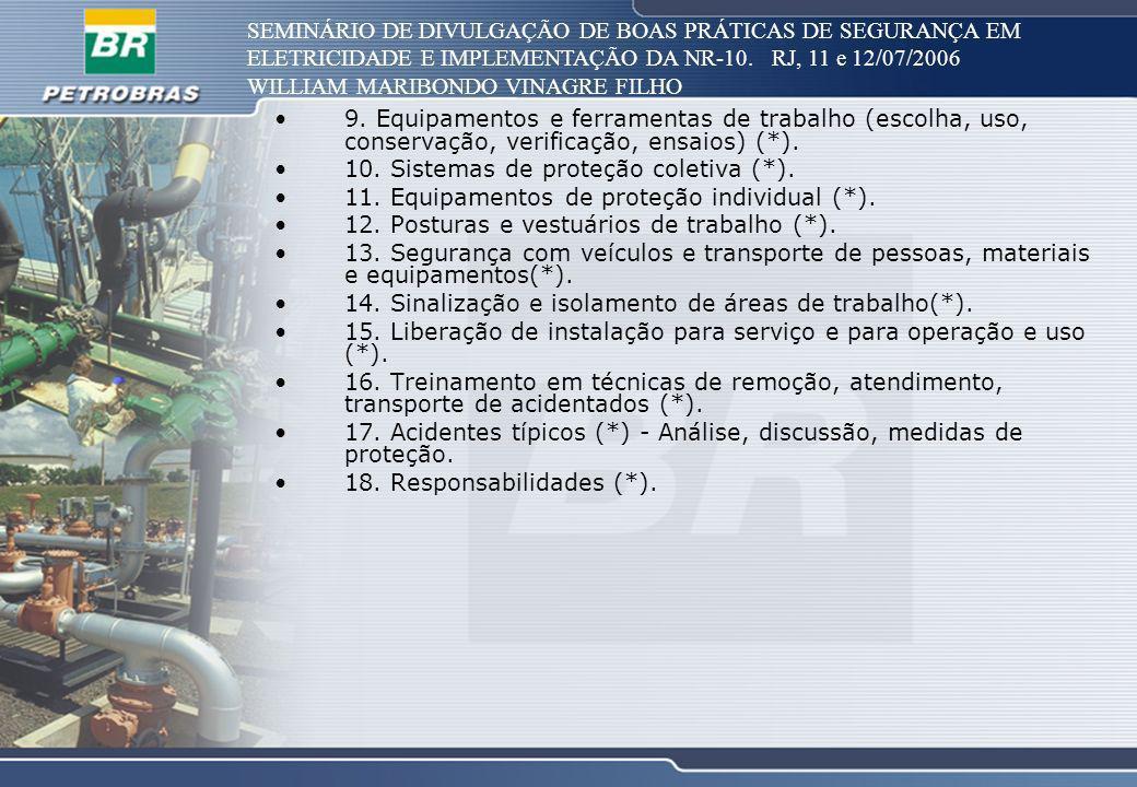 SEMINÁRIO DE DIVULGAÇÃO DE BOAS PRÁTICAS DE SEGURANÇA EM ELETRICIDADE E IMPLEMENTAÇÃO DA NR-10. RJ, 11 e 12/07/2006 WILLIAM MARIBONDO VINAGRE FILHO 9.