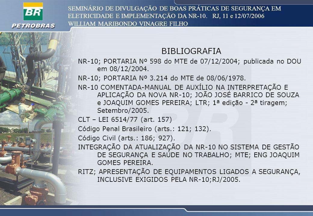 SEMINÁRIO DE DIVULGAÇÃO DE BOAS PRÁTICAS DE SEGURANÇA EM ELETRICIDADE E IMPLEMENTAÇÃO DA NR-10. RJ, 11 e 12/07/2006 WILLIAM MARIBONDO VINAGRE FILHO BI