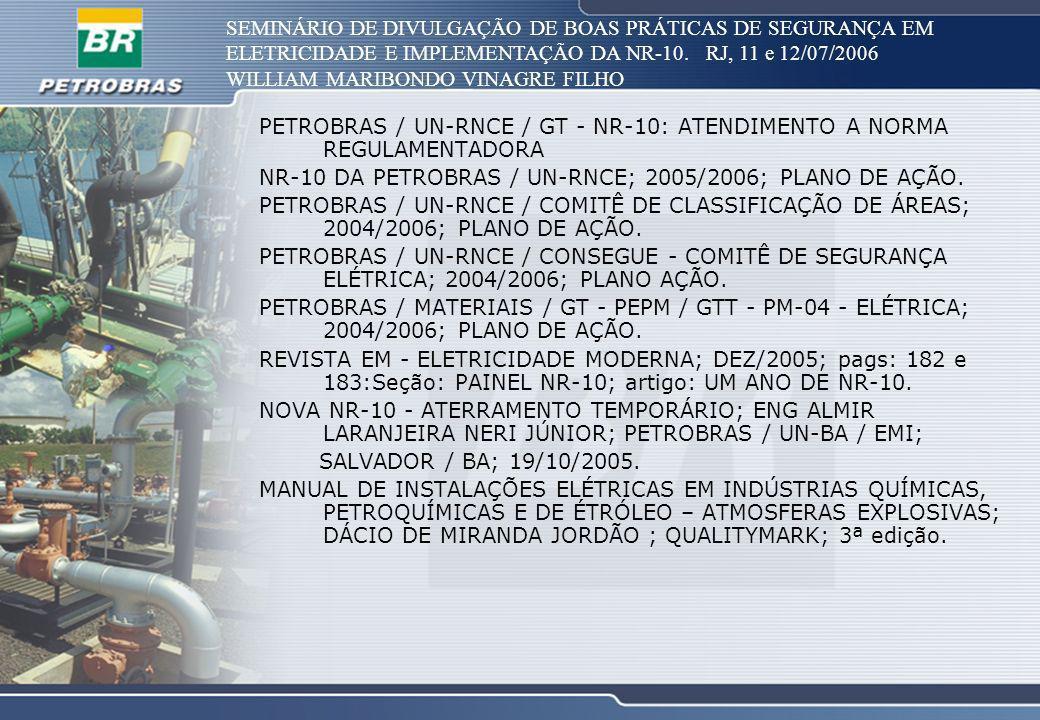 SEMINÁRIO DE DIVULGAÇÃO DE BOAS PRÁTICAS DE SEGURANÇA EM ELETRICIDADE E IMPLEMENTAÇÃO DA NR-10. RJ, 11 e 12/07/2006 WILLIAM MARIBONDO VINAGRE FILHO PE