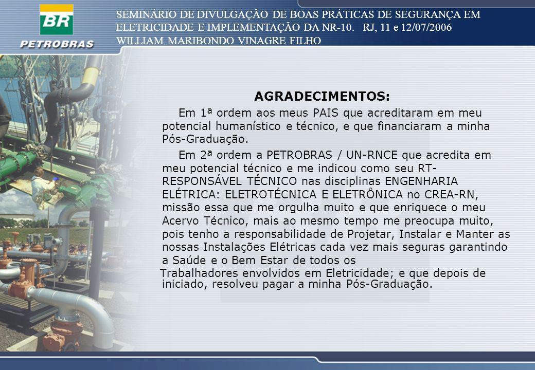SEMINÁRIO DE DIVULGAÇÃO DE BOAS PRÁTICAS DE SEGURANÇA EM ELETRICIDADE E IMPLEMENTAÇÃO DA NR-10. RJ, 11 e 12/07/2006 WILLIAM MARIBONDO VINAGRE FILHO AG