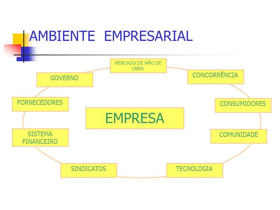 AMBIENTE EMPRESARIAL EMPRESA FORNECEDORES SISTEMA FINANCEIRO GOVERNO CONCORRÊNCIA CONSUMIDORES SINDICATOS COMUNIDADE TECNOLOGIA MERCADO DE MÃO DE OBRA