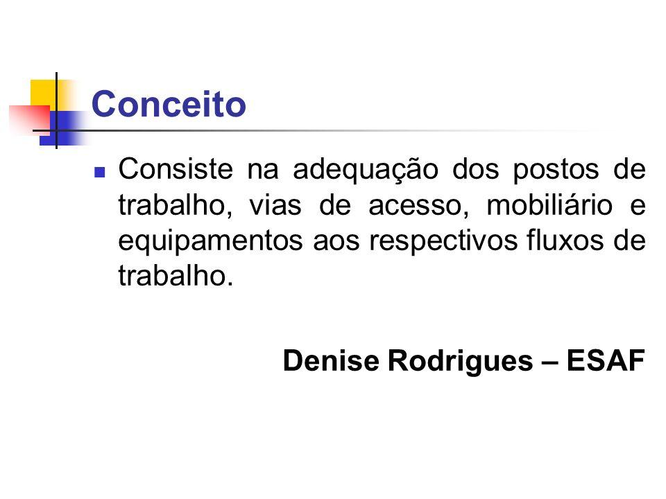 Conceito Consiste na adequação dos postos de trabalho, vias de acesso, mobiliário e equipamentos aos respectivos fluxos de trabalho. Denise Rodrigues