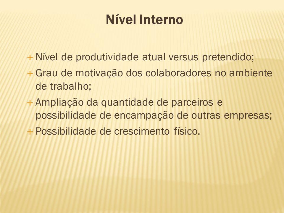 Nível Interno Nível de produtividade atual versus pretendido; Grau de motivação dos colaboradores no ambiente de trabalho; Ampliação da quantidade de