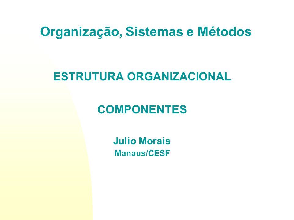 Introdução A estrutura organizacional é o conjunto ordenado de responsabilidades, autoridades, comunicações e decisões das unidades organizacionais de uma empresa.
