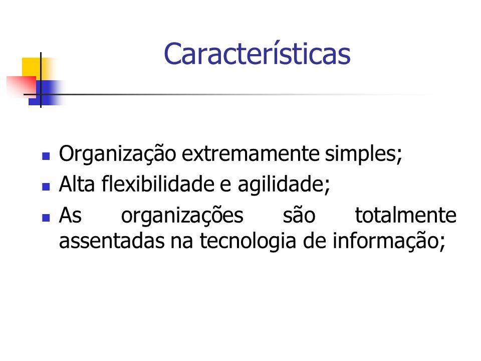 Características Organização extremamente simples; Alta flexibilidade e agilidade; As organizações são totalmente assentadas na tecnologia de informaçã