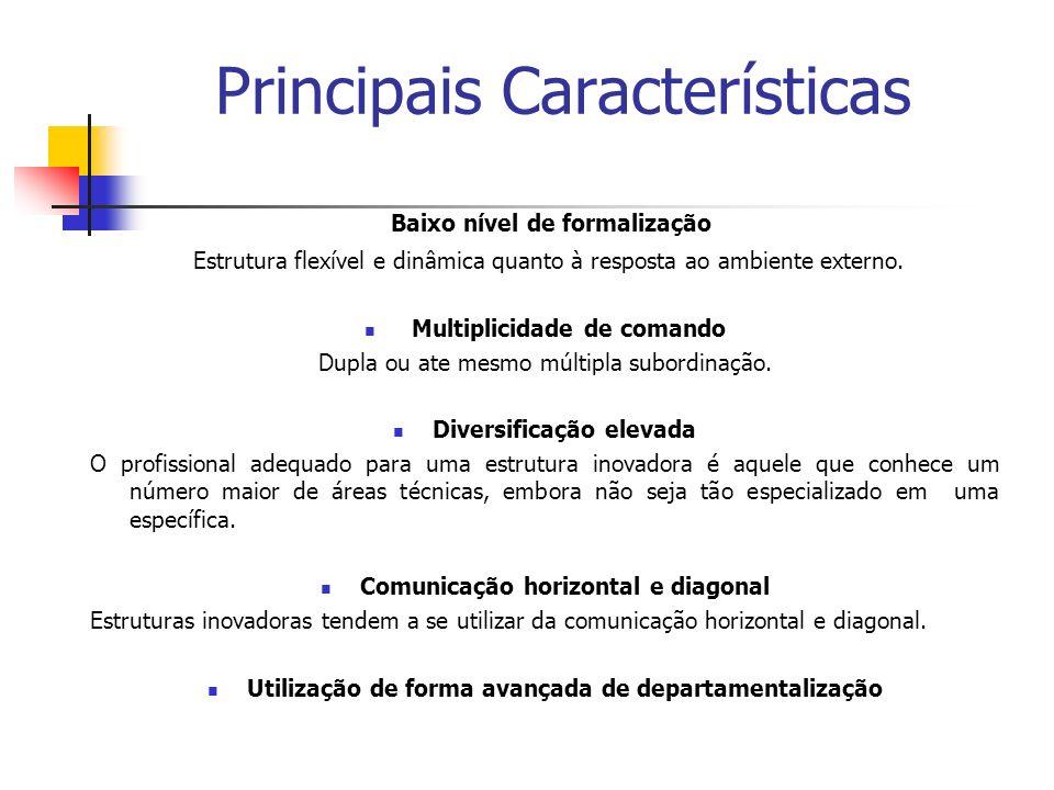 Principais Características Baixo nível de formalização Estrutura flexível e dinâmica quanto à resposta ao ambiente externo. Multiplicidade de comando