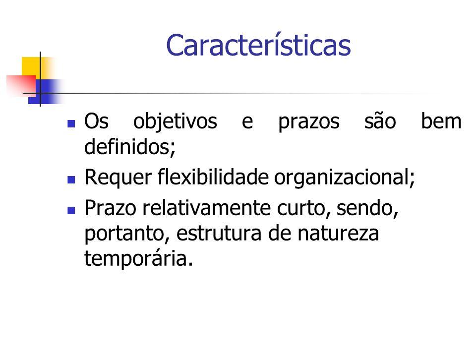 Características Os objetivos e prazos são bem definidos; Requer flexibilidade organizacional; Prazo relativamente curto, sendo, portanto, estrutura de