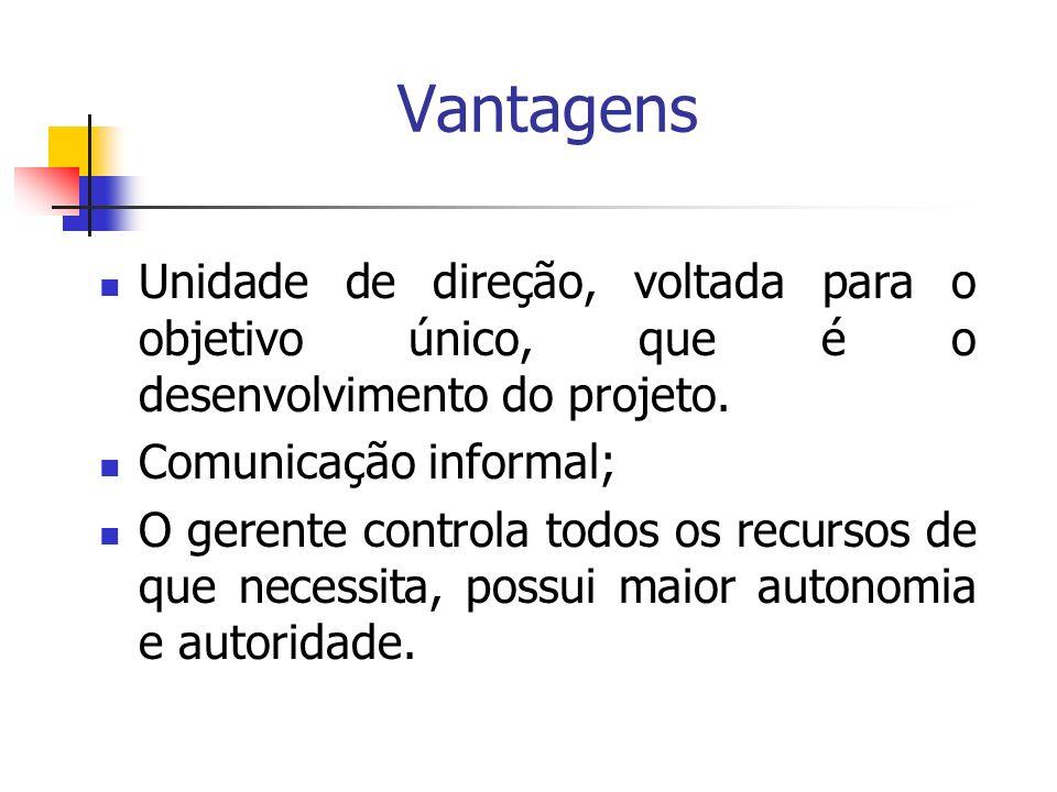 Vantagens Unidade de direção, voltada para o objetivo único, que é o desenvolvimento do projeto. Comunicação informal; O gerente controla todos os rec