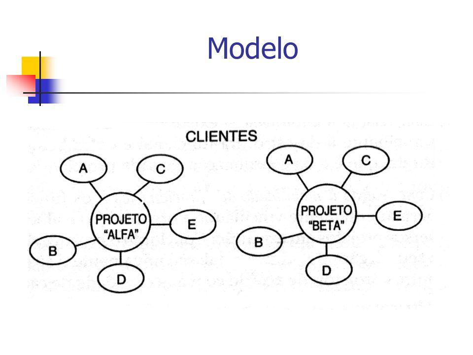 Estrutura Matricial É uma estrutura mista que combina a estrutura funcional com as estruturas com base em projetos.