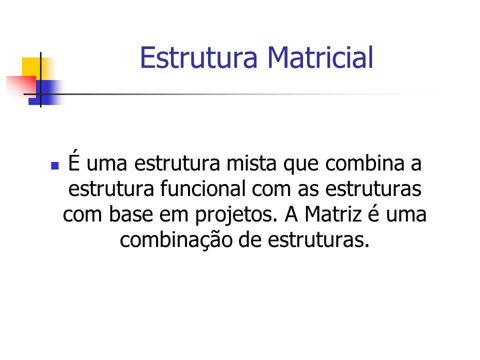 Estrutura Matricial É uma estrutura mista que combina a estrutura funcional com as estruturas com base em projetos. A Matriz é uma combinação de estru