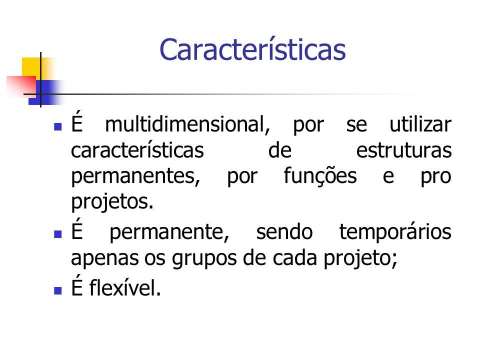 Características É multidimensional, por se utilizar características de estruturas permanentes, por funções e pro projetos. É permanente, sendo temporá