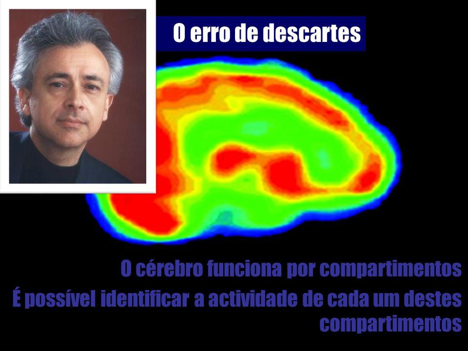 O erro de descartes O cérebro funciona por compartimentos É possível identificar a actividade de cada um destes compartimentos