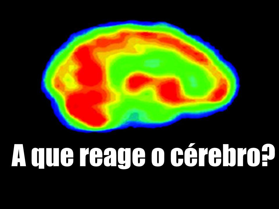 A que reage o cérebro?
