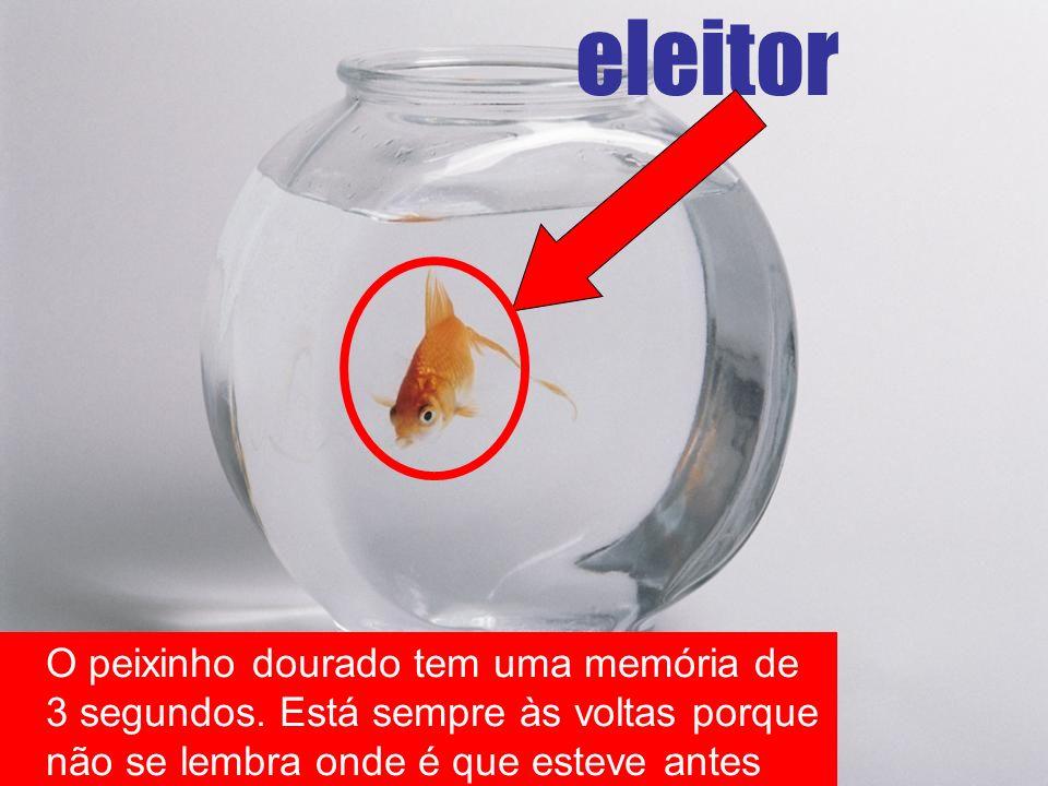 eleitor O peixinho dourado tem uma memória de 3 segundos. Está sempre às voltas porque não se lembra onde é que esteve antes