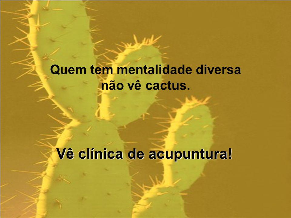 Quem tem mentalidade diversa não vê cactus. Vê clínica de acupuntura!