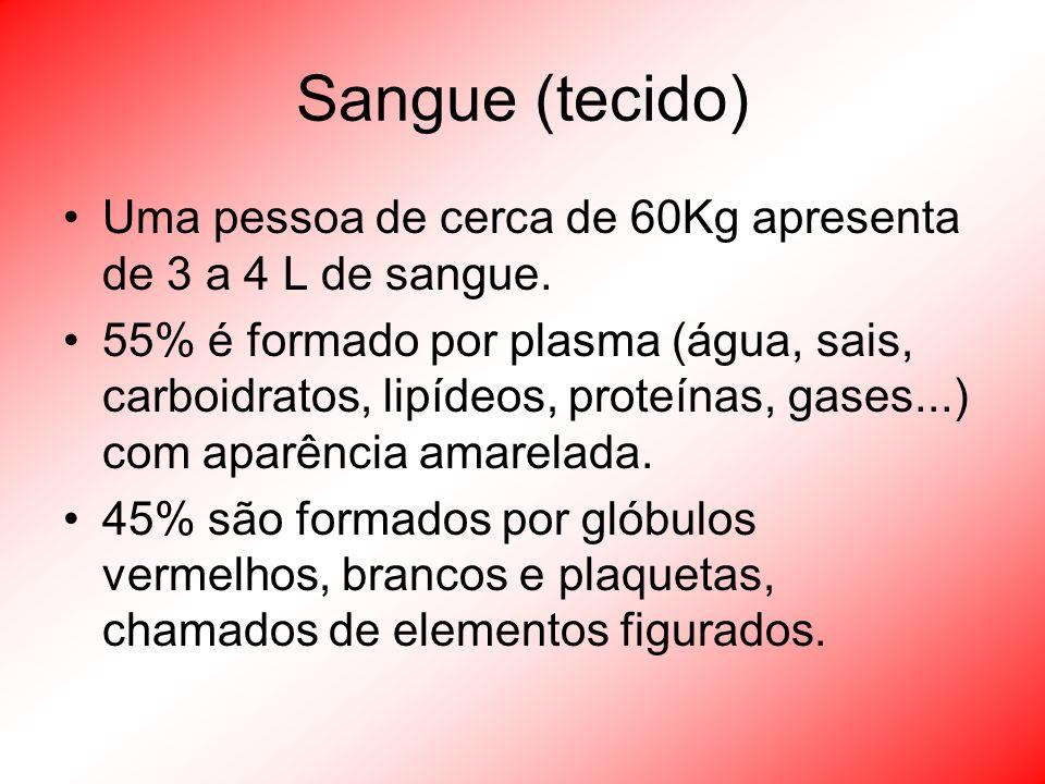 Sangue (tecido) Uma pessoa de cerca de 60Kg apresenta de 3 a 4 L de sangue. 55% é formado por plasma (água, sais, carboidratos, lipídeos, proteínas, g
