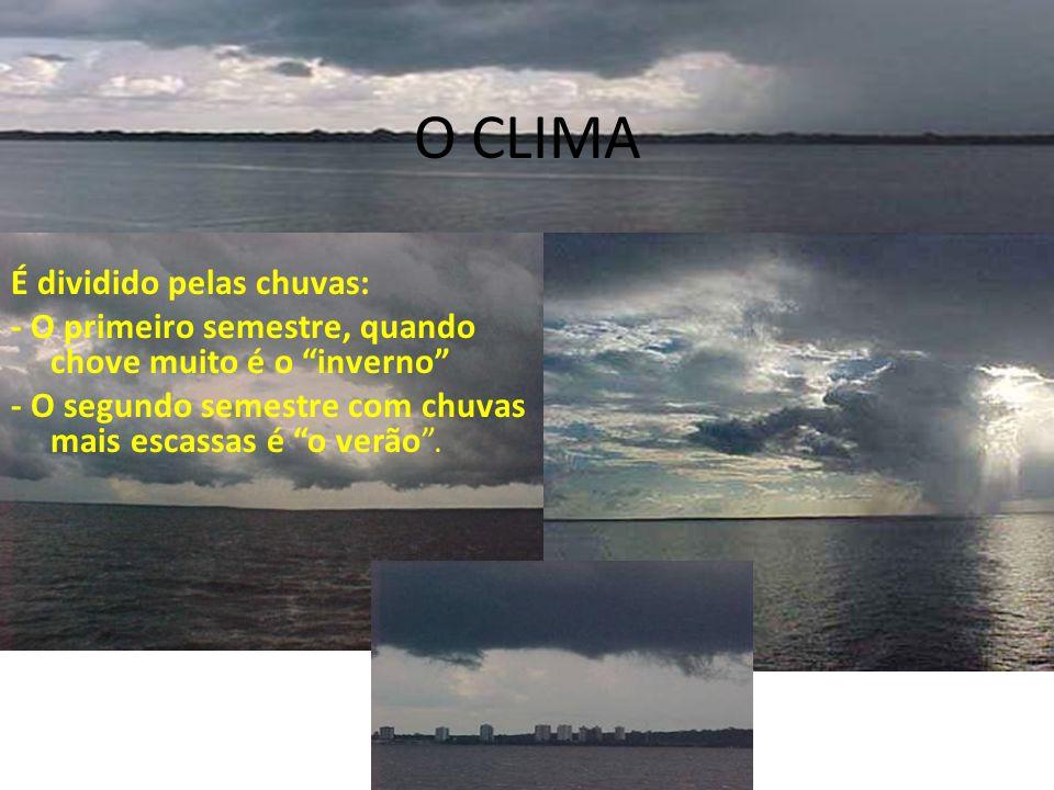 O CLIMA É dividido pelas chuvas: - O primeiro semestre, quando chove muito é o inverno - O segundo semestre com chuvas mais escassas é o verão.