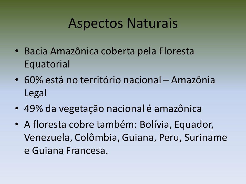 No Brasil a Amazônia corresponde a 3,5 milhões de km², representando 41% da área total do País.