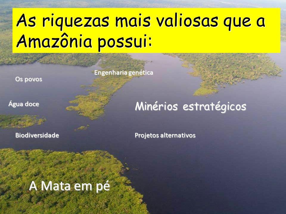 Minérios estratégicos As riquezas mais valiosas que a Amazônia possui: Os povos Água doce Biodiversidade Engenharia genética A Mata em pé Projetos alternativos