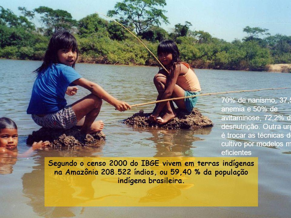 Segundo o censo 2000 do IBGE vivem em terras indígenas na Amazônia 208.522 índios, ou 59,40 % da população indígena brasileira.