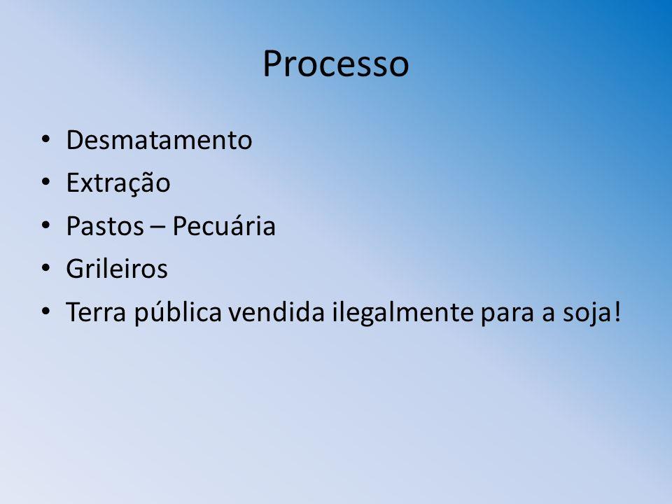 Processo Desmatamento Extração Pastos – Pecuária Grileiros Terra pública vendida ilegalmente para a soja!