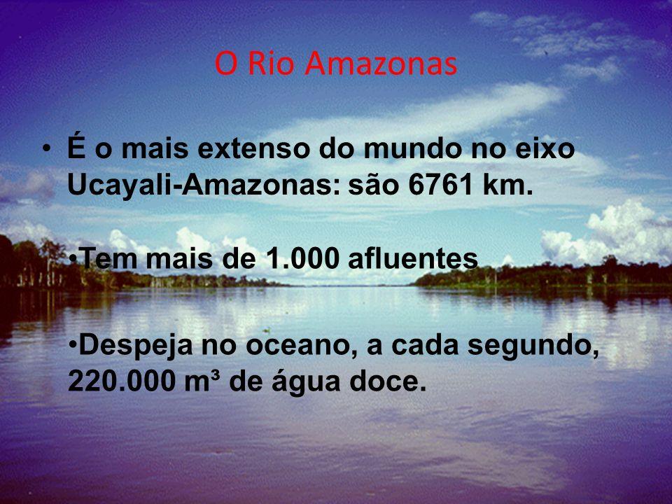 O Rio Amazonas É o mais extenso do mundo no eixo Ucayali-Amazonas: são 6761 km.
