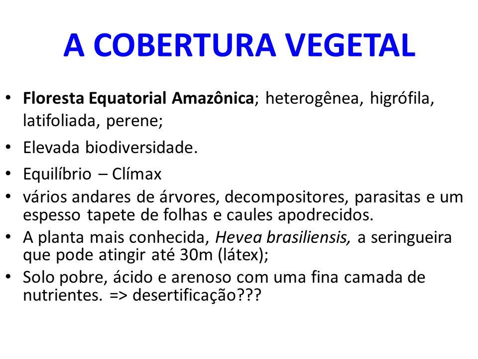 A COBERTURA VEGETAL Floresta Equatorial Amazônica; heterogênea, higrófila, latifoliada, perene; Elevada biodiversidade.