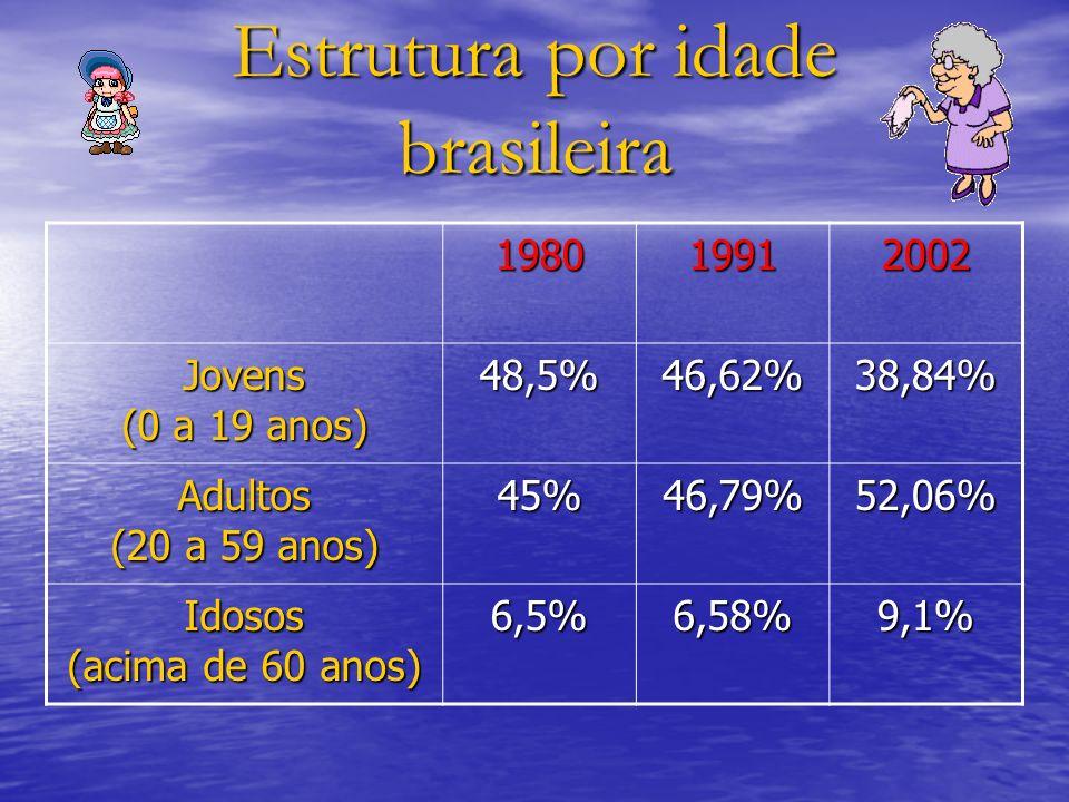 Estrutura por idade brasileira 198019912002 Jovens (0 a 19 anos) 48,5%46,62%38,84% Adultos (20 a 59 anos) 45%46,79%52,06% Idosos (acima de 60 anos) 6,
