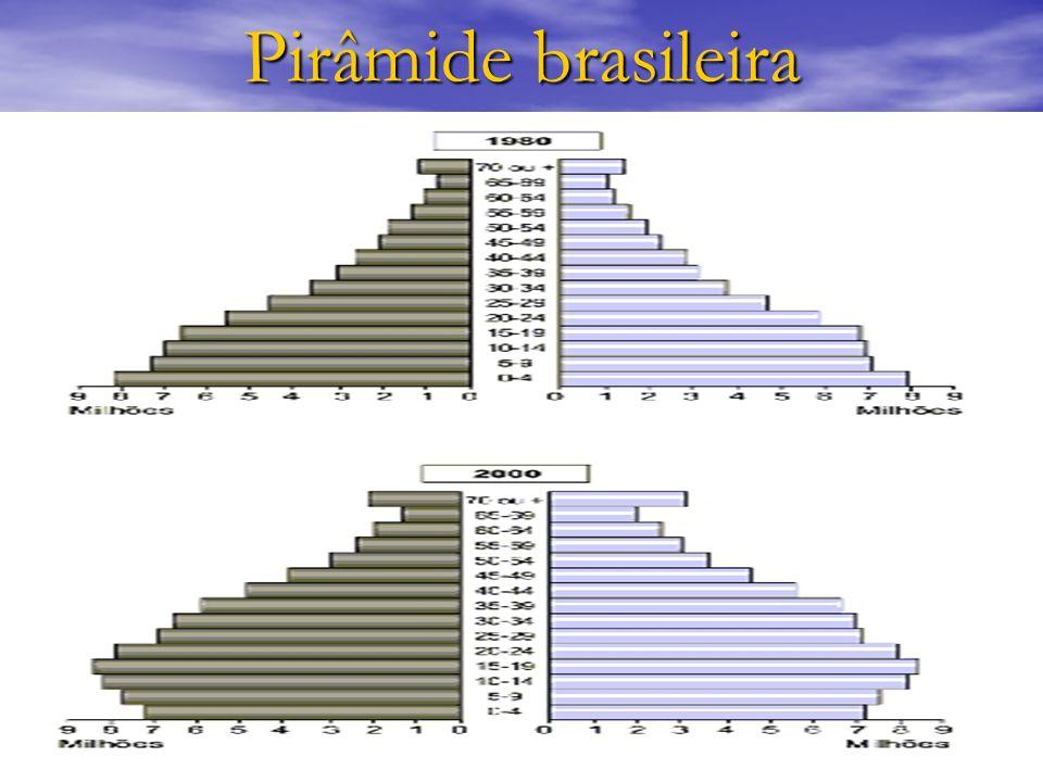 Pirâmide brasileira